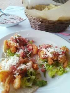 shrimp tcos